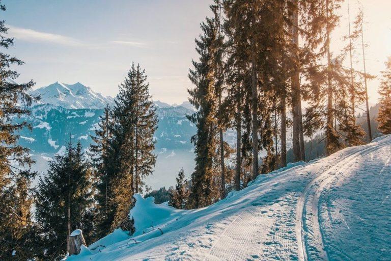 preparation physique au ski paris
