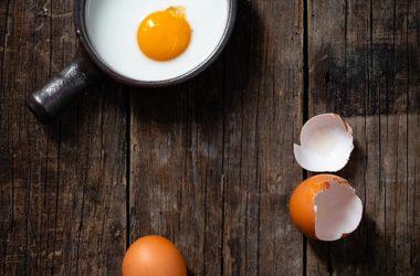aliments-riches-en-protéines